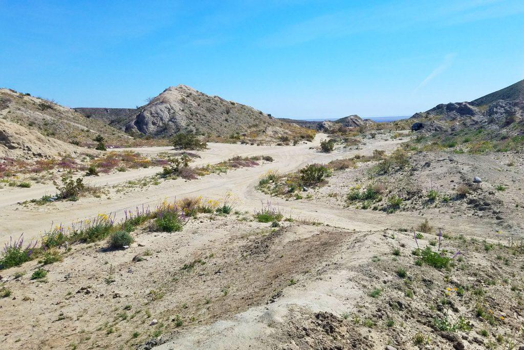 Arroyo Salado Campground