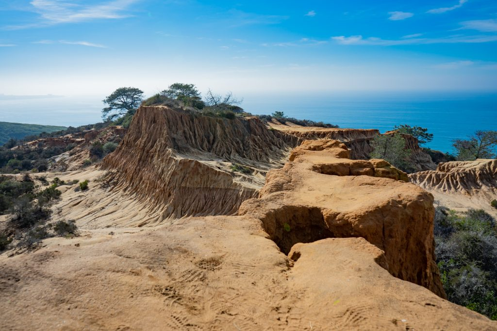 Torrey Pines Broken Hill Overlook