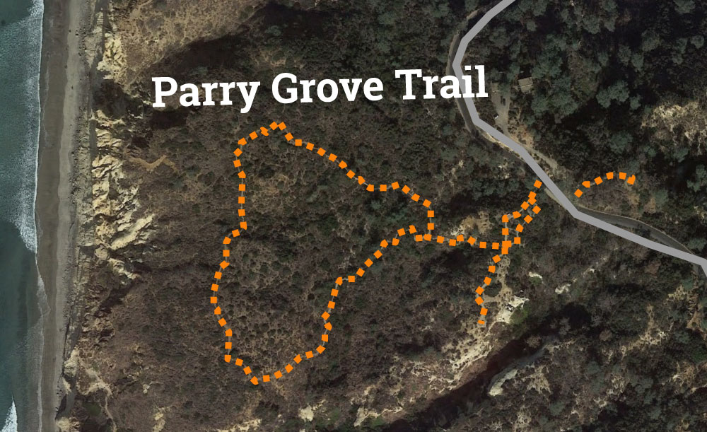 Torrey Pines Parry Grove Trail Map
